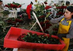 Cops in Colombia romance of valentine's day,