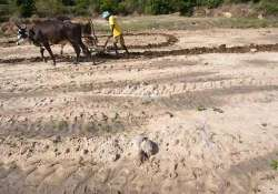 egom approves rs 1 207cr drought relief package to