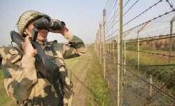 Pakistani intruder held on Gujarat border