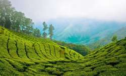 Kerala Holiday Packages - How to book Kerala tour package