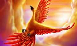 Vastu Tips: Hanging picture of Phoenix bird at home is beneficial. Know why