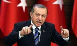 Turkey President Erdogan, Kashmir, MEA, India