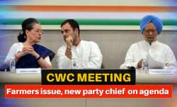 cwc meeting