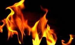 Delhi: Fire breaks out at cardboard godown in Dabri