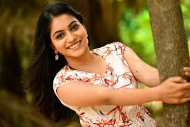 Who are Bigg Boss 3 Telugu final contestants, Akkineni Nagarjuna to
